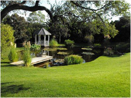 Easy Tips for Garden Maintenance