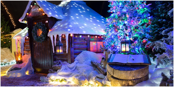 winter-wonderland-get-your-garden-ready-for-christmas